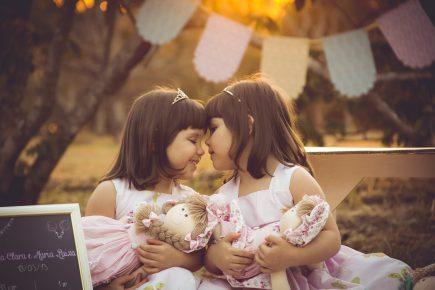 twins-2629776_1920